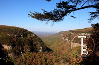Cloudland Canyon, GA